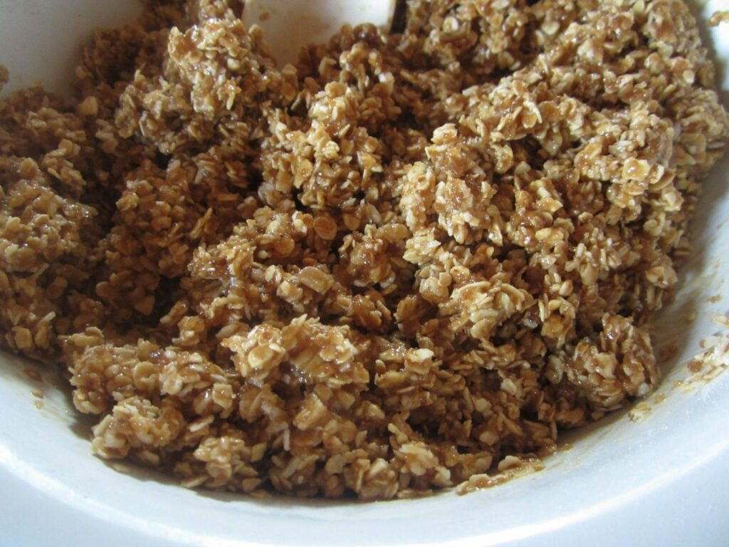 Coq Au Vin en oatskoekies blog 050